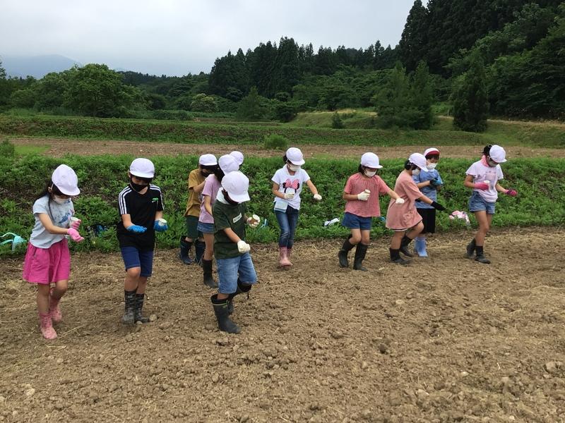 http://sasaoka-es.agano.ed.jp/IMG_0275.JPG